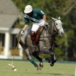 America's Best Equestrian Town – Aiken, SC